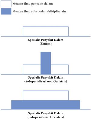 geriatri 2